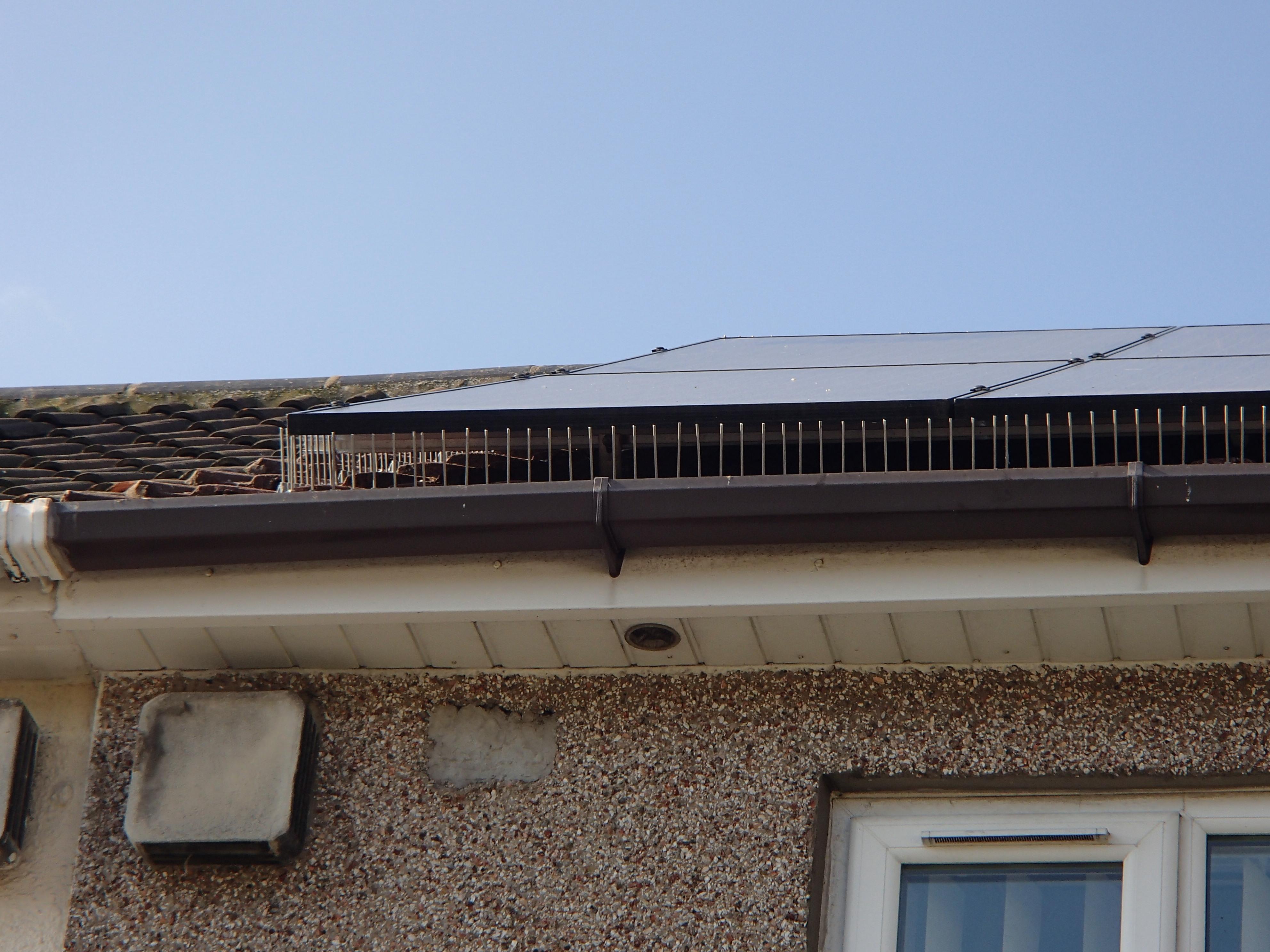 Solar Panel Pigeon Spikes_5